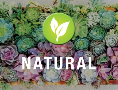 about_02_Natural